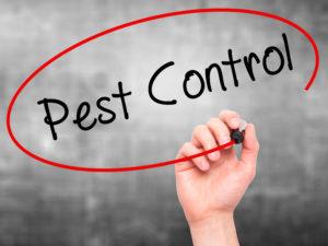Sann Antonio, Tx Pest Control